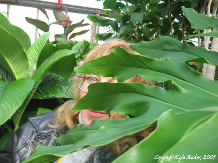 Image: Hiding...