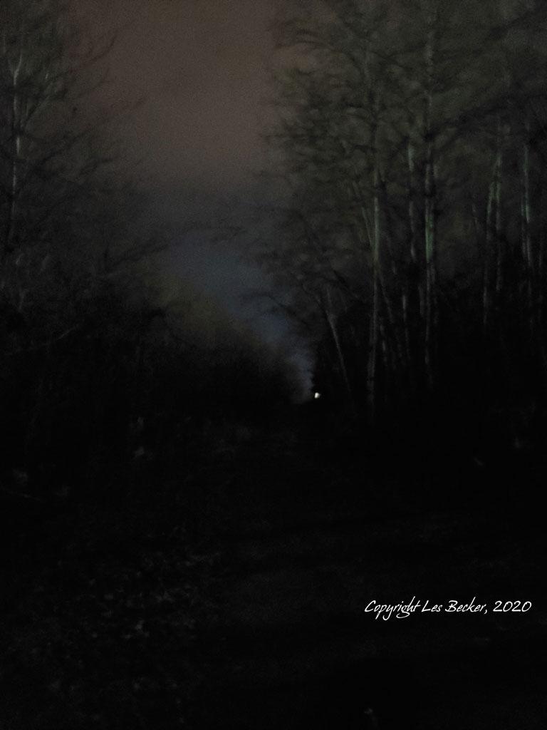 Creepy Path at night